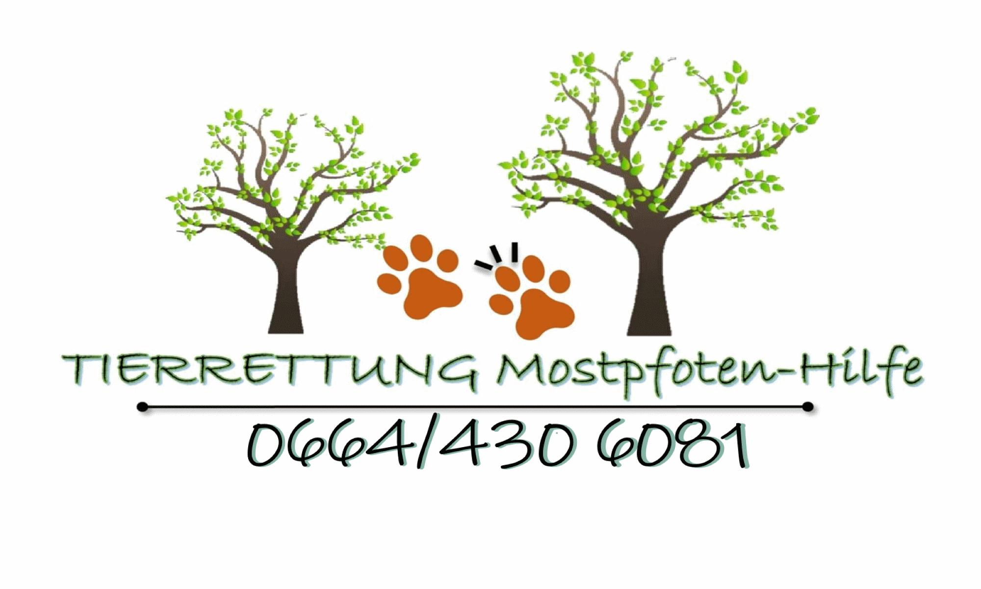 Tierrettung Mostpfoten Hilfe